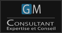 GM_consultant